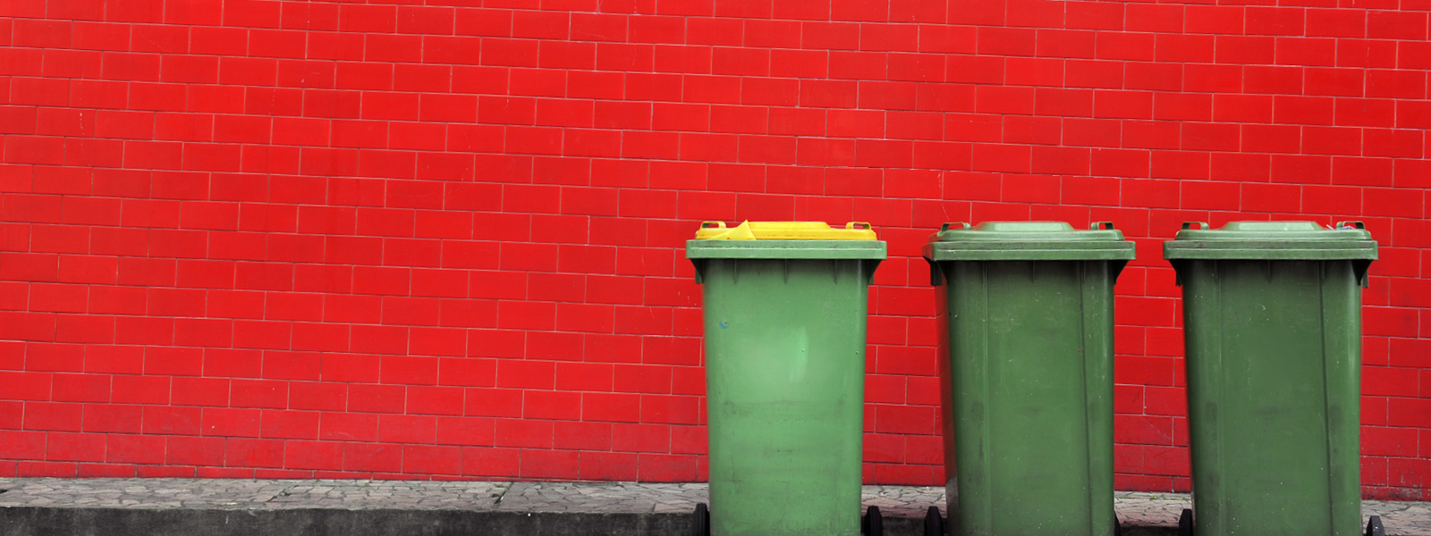 General and recycling bins against red wall