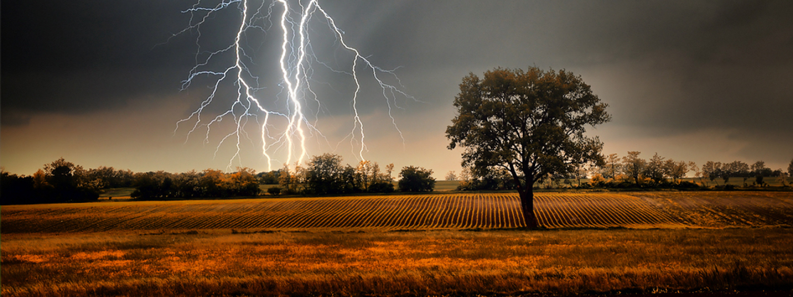 Lightening striking in field